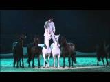 LORENZO EMOTION SHOW 16 BLACK AND WHITE Horses Avignon 2016