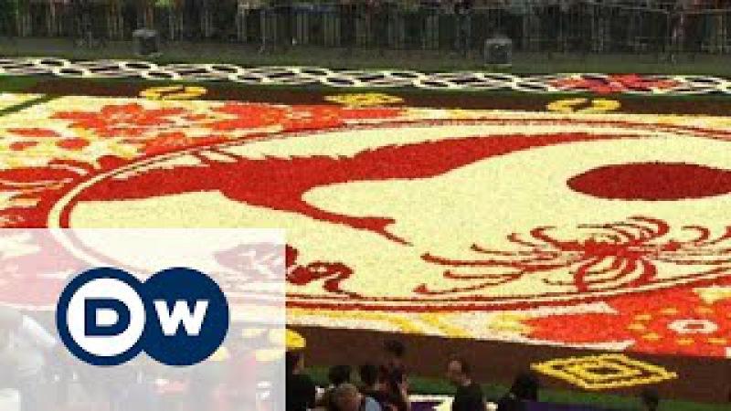 Ювілейний Квітковий килим у Брюсселі