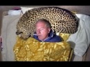 Man Uses A Live African Cheetah As A Pillow - Measures Big Cats Heart Rate With His Head