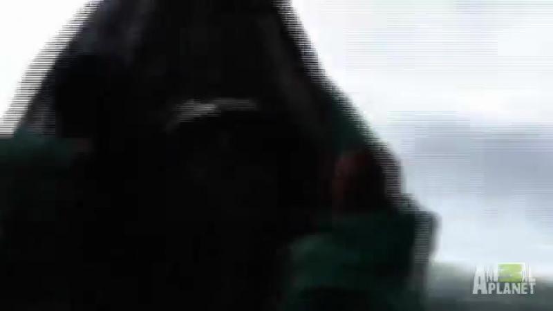 Неопознанный улов фрагмент фильма Русалки найдено тело