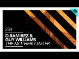 D.Ramirez &amp Guy Williams - No Guarantees (Original Mix)