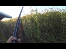 Охота на утку 2015