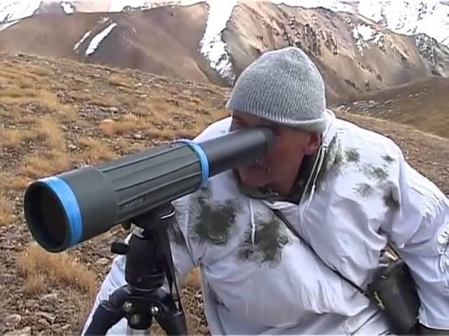 Охота на барана Марко Поло в горах Киргизии