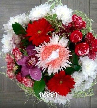 Пикалево цветы berry