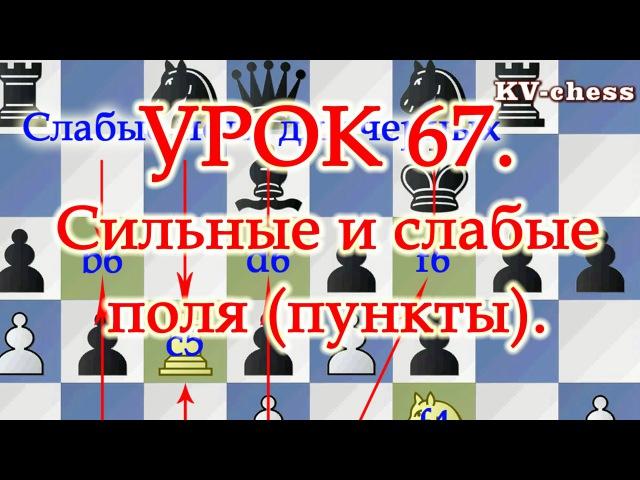 Сильные и слабые поля (пункты) - Урок 67 для 3 разряда - Шахматные.