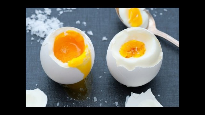 О самом главном: Жир на животе, варка яиц, солнечные ожоги
