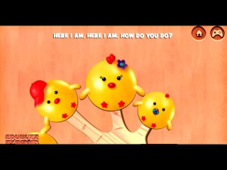 Chickens Cake Pop Finger Family  popular song for children.