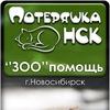 """ЗООПОМОЩЬ от """"Потеряшка-НСК"""". Новосибирск."""