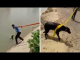 Man Uses Turban To Save Drowning Dog