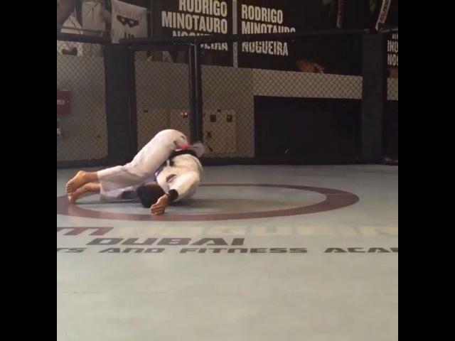 """Jiu-Jitsu News on Instagram: """"Aquecimento maneiro!! Repost @cobrinhacharles ・・・ Obrigado @teamnogueiradubai por sempre me receber muito bem em sua academia. Thank you…"""""""