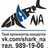 Shark NA Концерты в Самаре