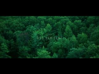 Море деревьев / The Sea of Trees (2015) - Трейлер