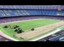 El FC Barcelona comença a instal·lar la gespa híbrida al Camp Nou Video Dailymotion
