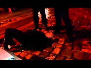 У Львові п'яні жінки влаштували погром