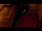 Кирюша гуляет под диваном.