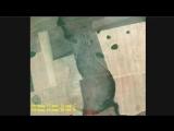 Ядерные воронки под Сарапулом