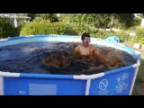 Дворовый бассейн с 5600 литрами Кока-Колы / Taking a Bath in a Giant 1,500 Gallon Coca-Cola Swimming Pool!