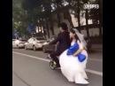 Жених уронил невесту со скутера и поехал дальше
