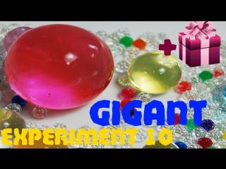 GIGANT ORBEEZ. maxi ball  orbeez  ОРБИЗ гигант. Самый большой шарик ОРБИЗ.