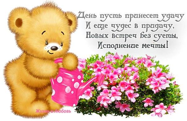 https://pp.vk.me/c631828/v631828111/226a3/iU8Vcs0iOK0.jpg