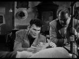 Паника на улицах / Panic in the Streets (1950)