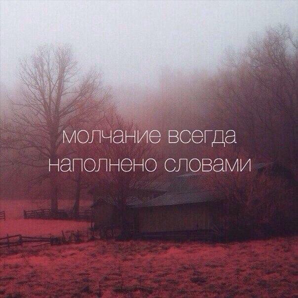 Фото №437198966 со страницы Лилечки Музафаровой