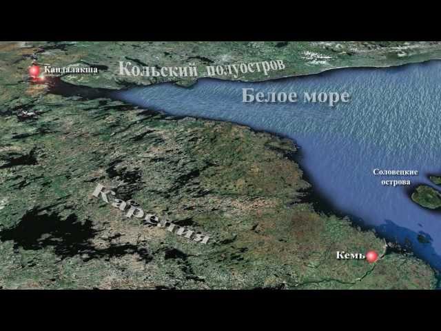 Беломорская одиссея 2012