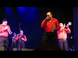 Fanfare Ciocarlia - Golden Days (live at Savoy)