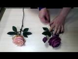 Роза Талея (зефирный фом). Роза Эмма (иранский фом). Мои мастер классы.