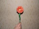 Как Сделать Цветок Из Бумаги Хризонтема На 8 Марта
