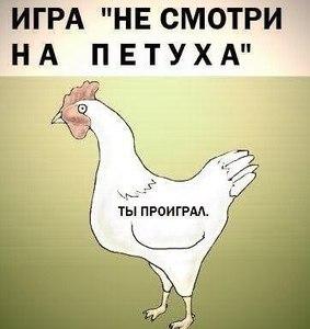 http://cs631831.vk.me/v631831064/b0da/sjKvk1PK2LY.jpg