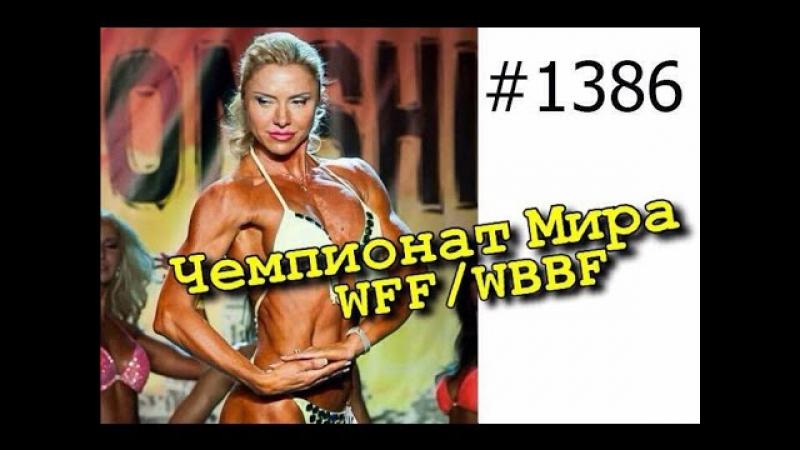 Фитнес бикини. Чемпионат Мира WFF/WBBF Польша. Гданьск. 17.10.2015