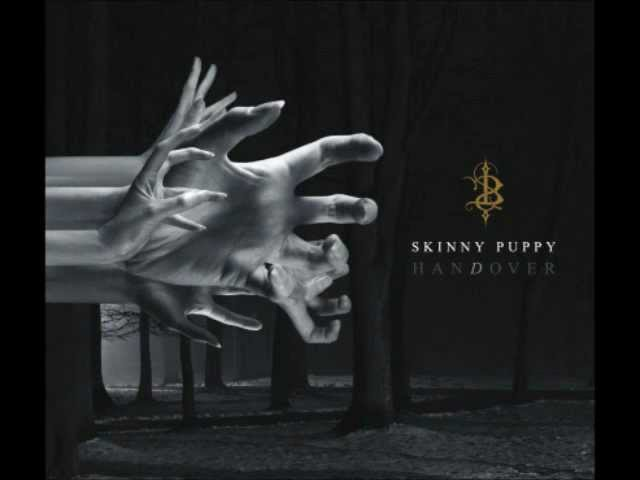 Skinny Puppy Cullorblind
