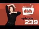 DancePlug Dish - Maria Sokolova FEATURED PLUGGER (from 4:49)