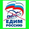 Выборы в Воронежской области.