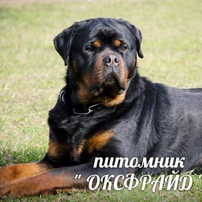 Оксана Ветрова