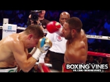 GGG vs Brook / Boxing Vines