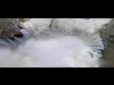 Құрандағы табиғат құндылықтары-Су - тіршілік көзі