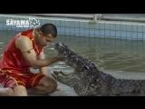 Экскурсии Паттайи  Крокодиловая ферма