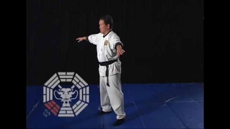 Wushu_ Bagua Chi Kung - Secrets of the Dragon (Jason Tsou) 02