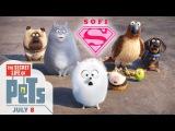 Тайная жизнь домашних животных! куча игрушек из мультика , распаковка!