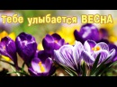 ТЕБЕ УЛЫБАЕТСЯ ВЕСНА! Время мечтать и любить...С Весной Вас!