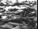 Нацистські концентраційні табори (1945) Eng   sub Rus