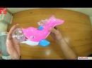 Đồ chơi con cá heo làm xiếc vui nhộn cho bé, Toy dolphin show circus fun for kids, Đồ chơi trẻ em