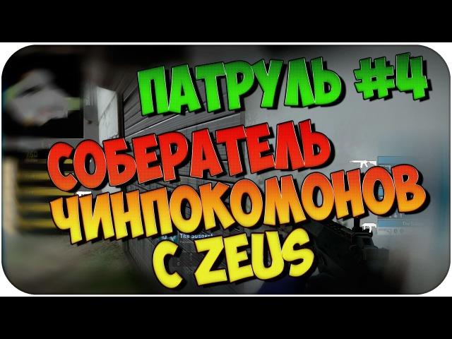 ПАТРУЛЬ 4 СОБЕРАТЕЛЬ ЧИНПОКОМОНОВ с Zeus / TNTG
