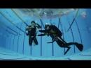 Первые шаги. Курс Open Water Scuba Diver SDI.
