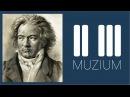 Бетховен – Несмелое приближение к струнному квартету «Истории по нотам», выпуск 37