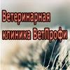 """Ветеринарная клиника """"ВетПрофи"""" г.Минск"""