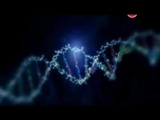 Гений Великобритании ученые, которые изменили мир 05. Задавая главные вопросы (2010)