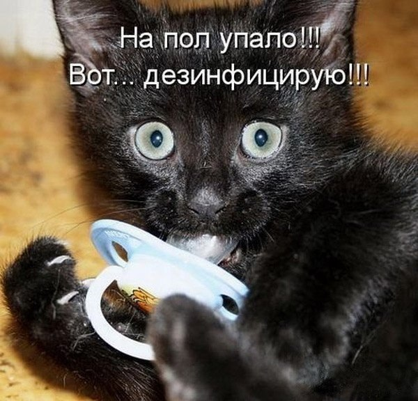http://cs631922.vk.me/v631922345/1ad3e/ceTRMAbseBU.jpg